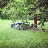 Wooden table in green summer garden Royalty Free Stock Images