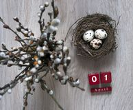 On a wooden table lies a nest with eggs and stands a vase with willow branches calendar Easter cubes April Royalty Free Stock Images