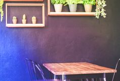 Wooden table with metal chairs placed close to the wall in coffee shop, on the wall has cute decoration of artificial plants and stock photography
