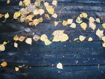 On a wooden table old autumn leaves Stock Photos