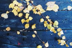 On a wooden table old autumn leaves Royalty Free Stock Photo
