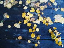 On a wooden table old autumn leaves Stock Photo