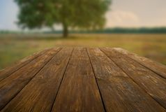 Wooden table outdoors with autumn field background Royalty Free Stock Photo