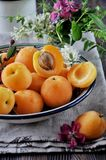 On a wooden table on a platter of fresh apricots with bones, decorated with flowers Royalty Free Stock Photos