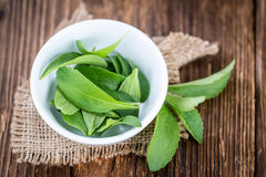 Wooden table with Stevia leaves (selective focus) Stock Photo