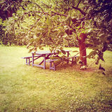 Wooden table in summer garden Royalty Free Stock Photo