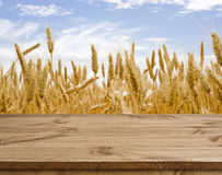 Wooden table surface over defocused golden wheat field landscape background Royalty Free Stock Image