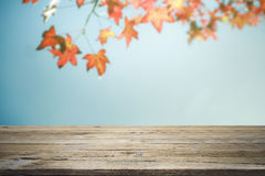 Wooden table or terrace and red leaves on blue sky background Royalty Free Stock Image