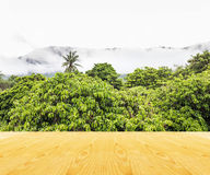 Wooden table top with nountain in fog background Stock Photography