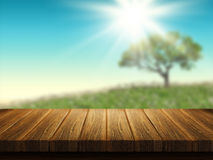 Wooden table with tree landscape in background Stock Images