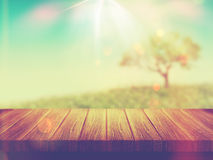 Wooden table with tree landscape with vintage effect Stock Photography