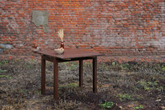 Wooden table with vase and wallnuts on green grass near old bric Stock Images