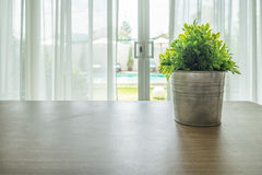 Wooden table with vintage vase plant on curtain Royalty Free Stock Photos