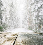 Wooden table in winter forest Stock Photo