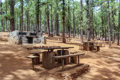 Wooden tables and stone grills for picnic and barbecue Canarian Pine forest, Esperanza, Tenerife royalty free stock photos