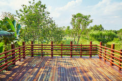 Wooden deck wood outdoor patio garden landscaping terrace. Empty wooden deck of outdoor patio with balustrade in sunshine in garden. Wood patio and garden Royalty Free Stock Photo