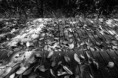 Wooden terrace and dry leaves Stock Photos
