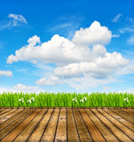 Wooden terrace with green grass and blue sky Stock Photography