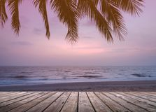 Wooden terrace over tropical island beach with coconut palm at sunset or sunrise time. Empty wooden terrace over tropical island beach with coconut palm at Stock Photos