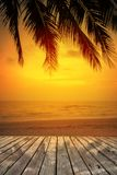 Wooden terrace over tropical island beach with coconut palm at sunset or sunrise time. Empty wooden terrace over tropical island beach with coconut palm at Royalty Free Stock Images