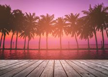 Wooden terrace over tropical island beach with coconut palm at sunset or sunrise time. Empty wooden terrace over tropical island beach with coconut palm at Stock Photography