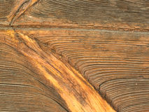 Wooden texture. Old wood, could be used as texture or background Stock Image