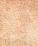 Wooden texture. Direct scanned wooden piece. Wooden stock photography