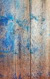 Wooden texture. Old wooden wall with worn blue paint Stock Images