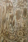 Wooden texture. To be used as a background Stock Photo