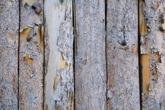 Wooden texture of boards with peeling bark. stock photography