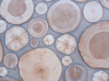Wooden texture of Cement floor. Stock Photos