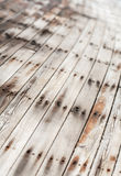 Wooden texture close up photo , nice background or Royalty Free Stock Image