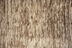 Wooden Texture With Cracked Paint Royalty Free Stock Photo