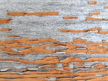 Wooden texture with cracked and peeling paint Stock Image
