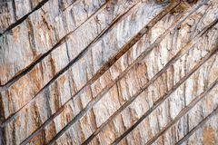 Wooden texture with diagonal lines. Wooden cracked texture. Pattern royalty free stock image