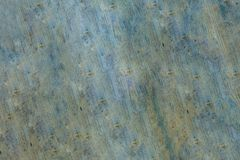 Wooden texture green gray eco base design rustic hard background clean foundation royalty free stock images