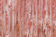 Wooden texture Stock Image