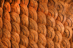 Wooden texture like Fish scale. Background Royalty Free Stock Photography