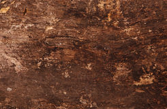 Wooden Texture. Old wooden background and Texture Royalty Free Stock Image
