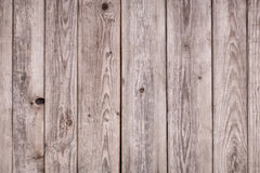 Wooden texture. Old gray wall wood background, wooden  texture Stock Image