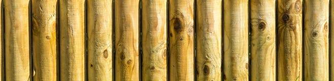Wooden texture. Parallel wooden log texture in vertical Stock Image