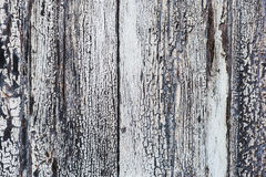 Wooden texture with peeling white paint and cracks Stock Photos