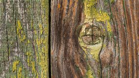 Wooden texture. Wooden planks with peeling paint royalty free stock photography