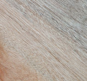 Wooden texture to serve as background Royalty Free Stock Images