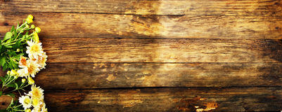 Wooden texture. On top of autumn flowers. On her flowers Royalty Free Stock Photos