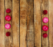 Wooden texture. On top of autumn flowers. On her flowers Stock Photography