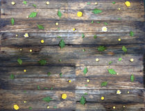Wooden texture. On top of autumn flowers. On her flowers Royalty Free Stock Photography