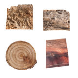 Wooden Texture Tree Bark. Set of 4 Isolated Wood Slices and tree Barks Stock Images