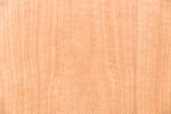 Wooden texture of wall abstract for background Stock Images