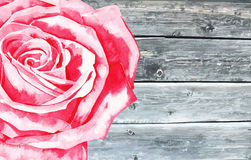 Wooden texture with watercolor rose Royalty Free Stock Image